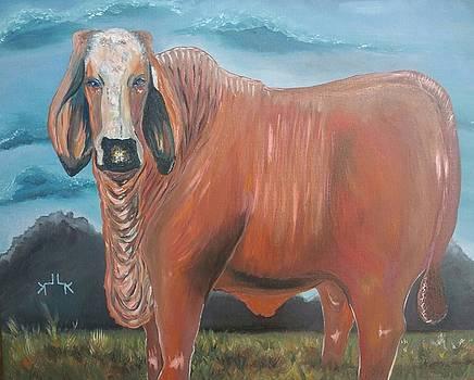Brahmin-Hereford X by Lettie Krell