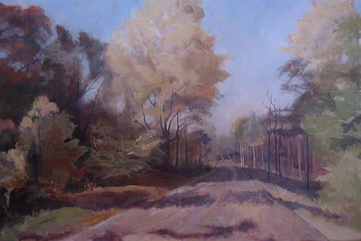 Braim Road by Terri Messinger