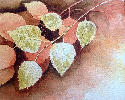 Branch of Birch by Sarah Guy-Levar