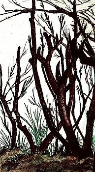 Branches by Jesus Nicolas Castanon