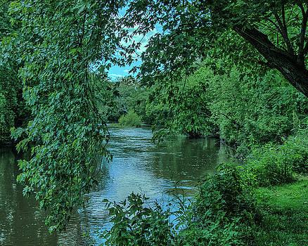 Brandywine River by Richard Goldman