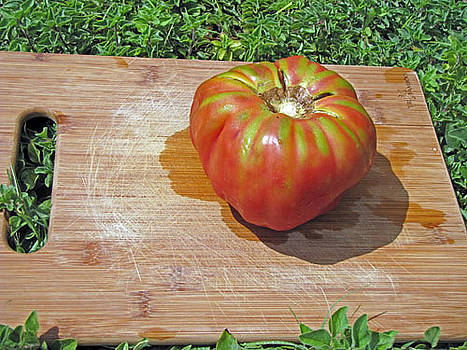 Brandywine tomato on a cutting board by Richard Nickson