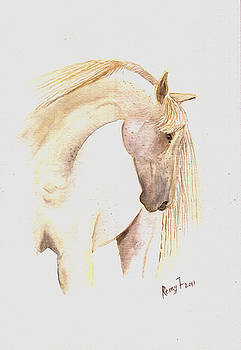 White Horse from the wild by Remy Francis
