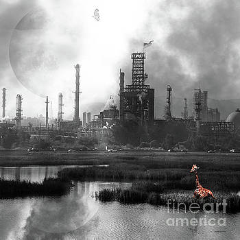 Wingsdomain Art and Photography - Brave New World 7d10358 v3 square bw