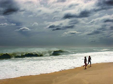 Braving the Storm by Steve Karol
