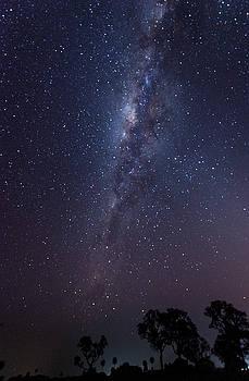 Brazil by Starlight by Alex Lapidus