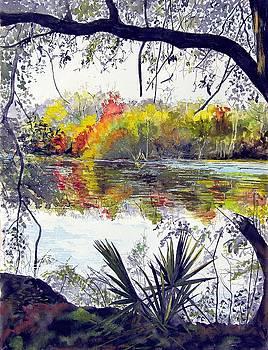 Brazos Palmettos by Sylvia Morgan