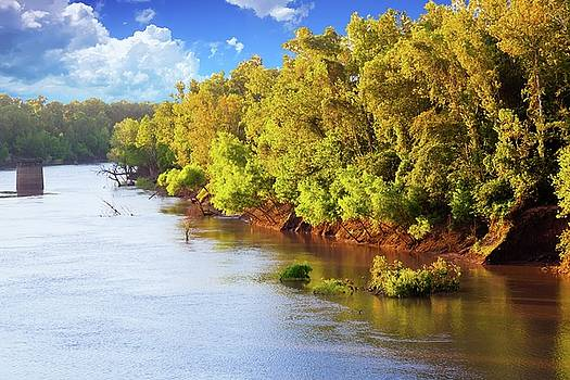 Brazos River by Judy Wright Lott