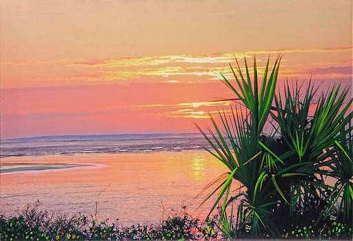 Breach inlet sunrise palmetto  by Virginia Bond