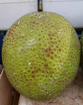 Breadfruit - Catford Shopping Centre by Mudiama Kammoh