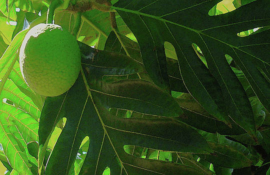 James Temple - Breadfruit