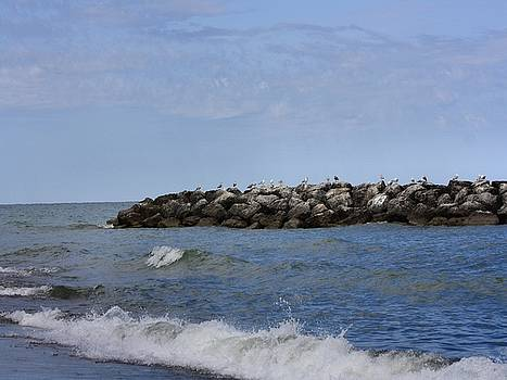Break Wall Lake Erie 43 by Gothicrow Images