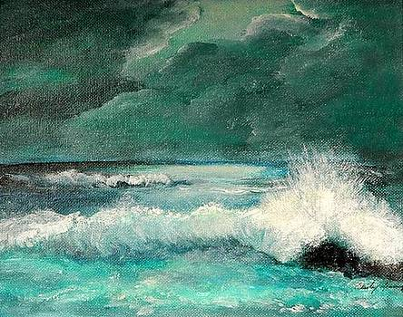 Breaking Storm by Shirley Lawing