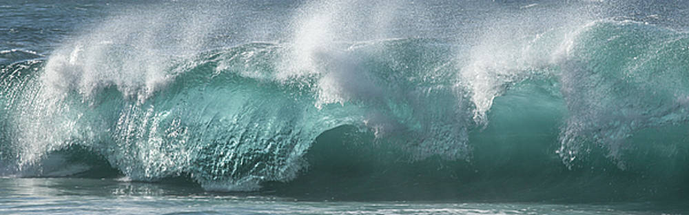 Breaking Wave by Roger Mullenhour