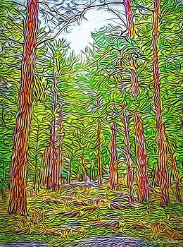 Breath Of Pine by Joel Bruce Wallach