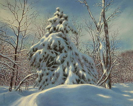 Breath Of Winter by Barry DeBaun