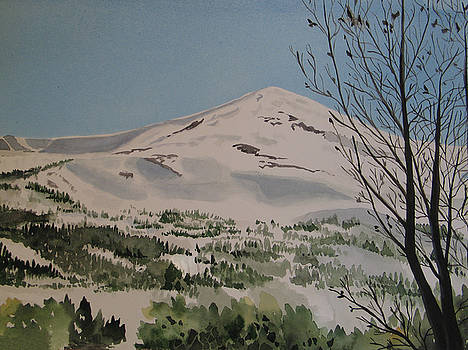 Breckenridge View by Carole Poole