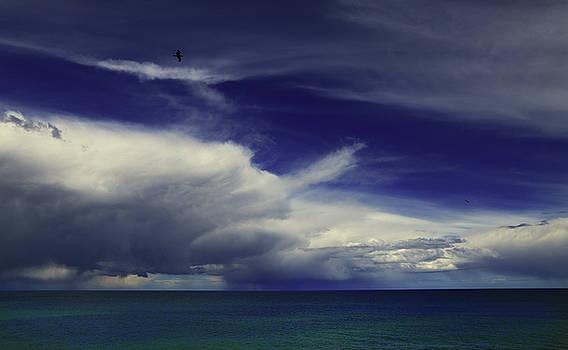Brewing up a Storm by Nareeta Martin