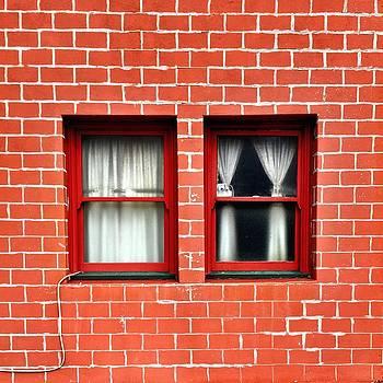 Brick and Windows by Julie Gebhardt