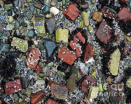 Brick Beach by Bill Thomson