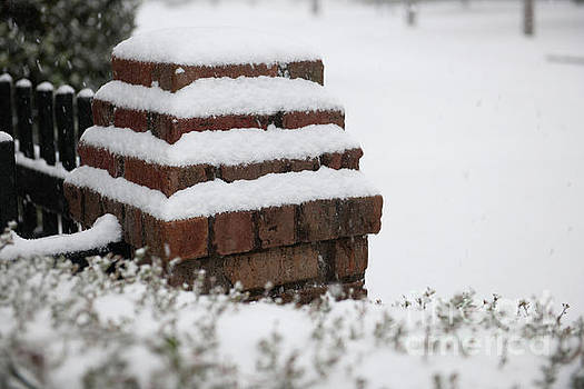 Dale Powell - Brick Cover in Snow