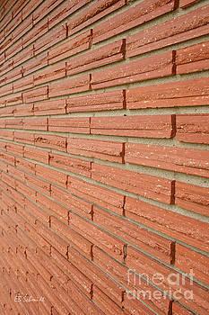 Brick Wall 1 by E B Schmidt