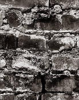 Brick Wall by Jason Kittelberger