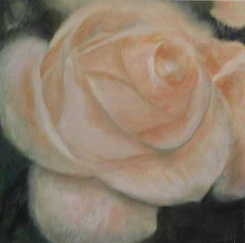 Bridal Blush by Selma Cooper