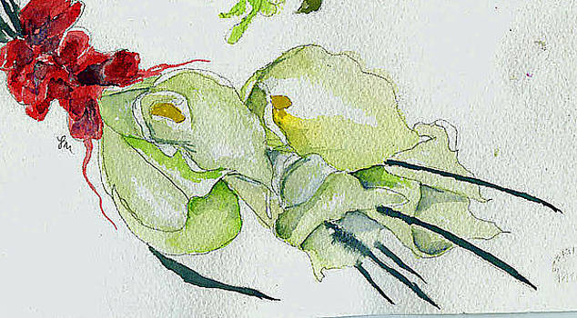 Bridal Flowers 2 by Jo Anna McGinnis