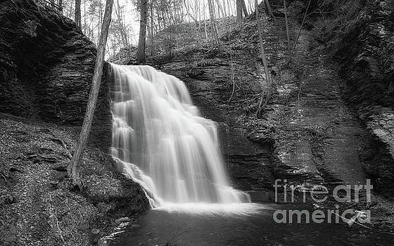 Bridal Veil Falls BW  by Michael Ver Sprill