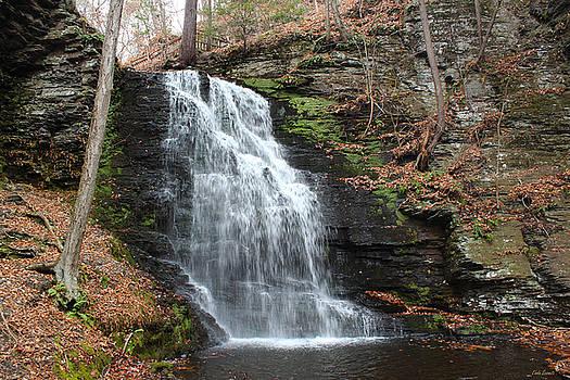 Linda Sannuti - Bridal Veil Falls