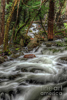 Bridalveil Creek 967 by Terry Garvin