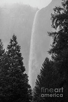 Bridalveil Falls Through Snow Yosemite National Park by Wayne Moran