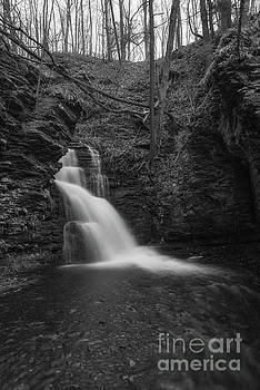 Bridesmaid Falls BW  by Michael Ver Sprill