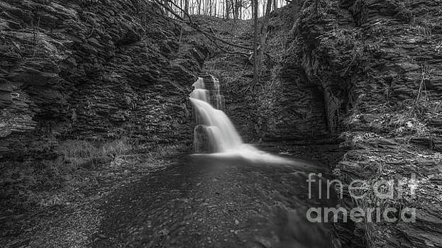 Bridesmaid Falls Pano BW by Michael Ver Sprill