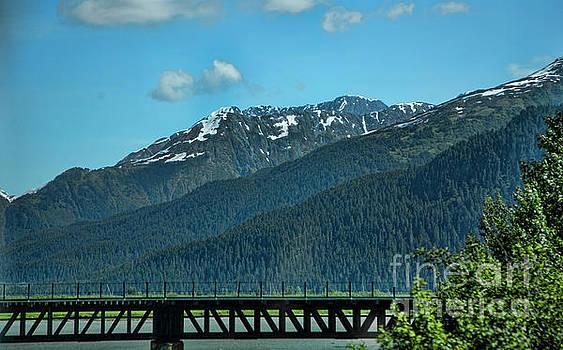 Bridge Alaska Rail  by Chuck Kuhn