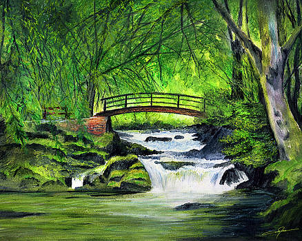 Bridge and waterfall by Dale Jackson