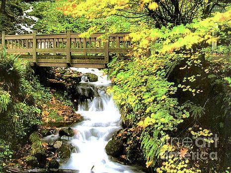 Bridge and Waterfall  by Ruth Housley