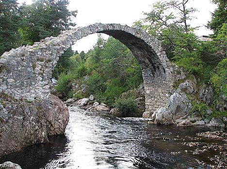 Bridge by Annemeet Hasidi- van der Leij