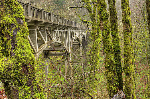 Bridge at Latourell Falls Oregon by Dustin K Ryan