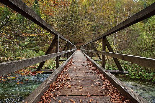 Bridge by Davor Zerjav