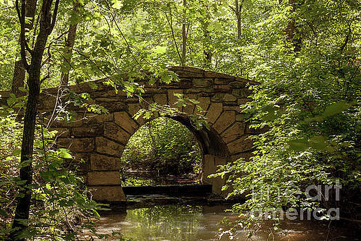 Bridge in the Forest by Iris Greenwell