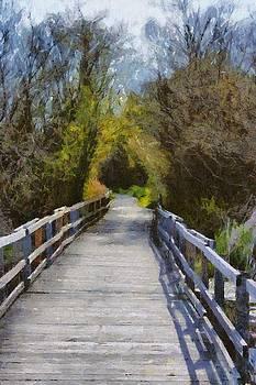 Bridge In The Woods by Chris Bird