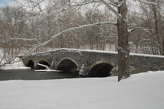 Bridge in winter by Don Van Fleet