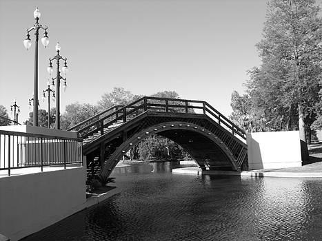 Bridge by Marianne Mason