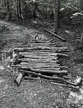 Bridge of Logs by Phil Perkins