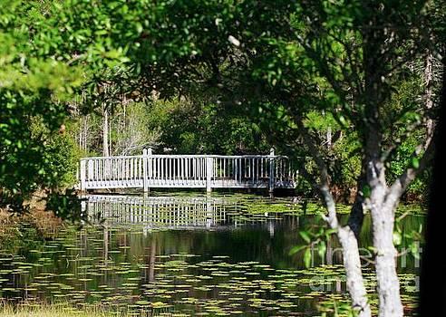 Bridge on Lilly Pond by Lori Mellen-Pagliaro