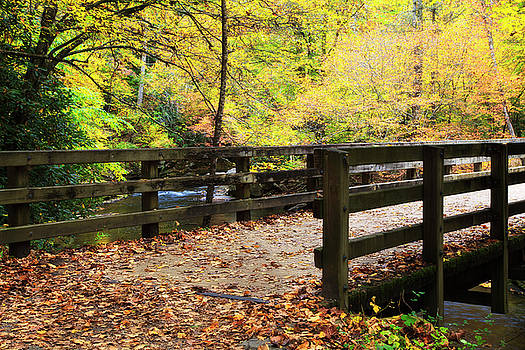 Jill Lang - Bridge over a Creek