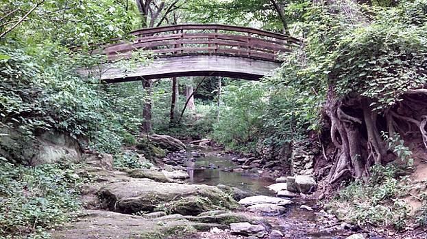 Allen Nice-Webb - Bridge Over Calm Stream