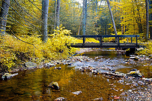 Fall Creek by John Daly